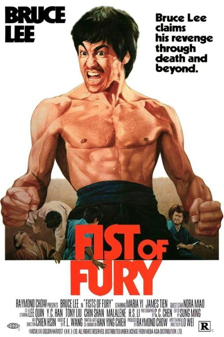 Fist of Fury Review
